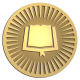 Ace Recognition Gold Coin, Lapel, Plaque - with your text and logo - Christian Designs - bible - open bible  religious, metal
